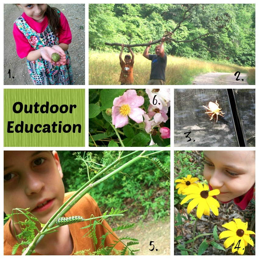 This Week at Elkfork Academy, July 1-5