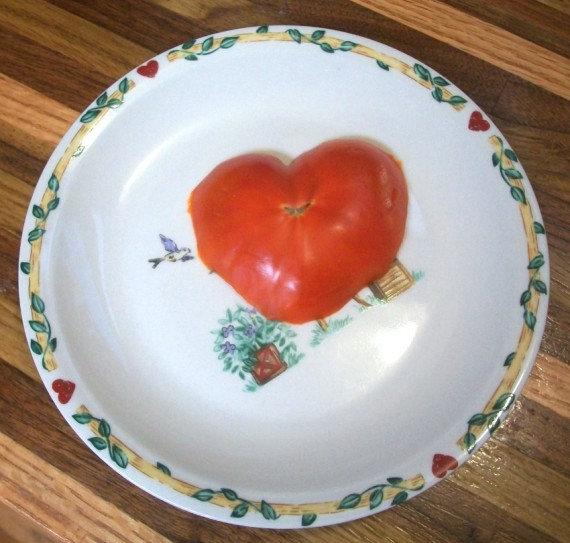 i {heart} tomatoes - Apron Strings & other things