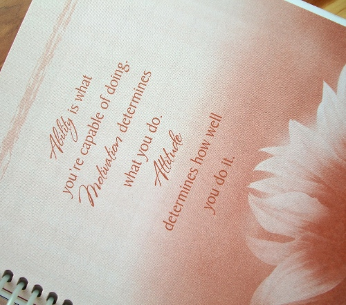 Day Planner 3 | Apron Strings & other things