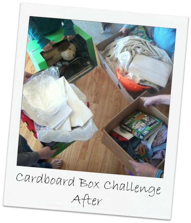Cardboard Box Challenge After | Apron Strings & other things