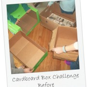 The Cardboard Box Challenge