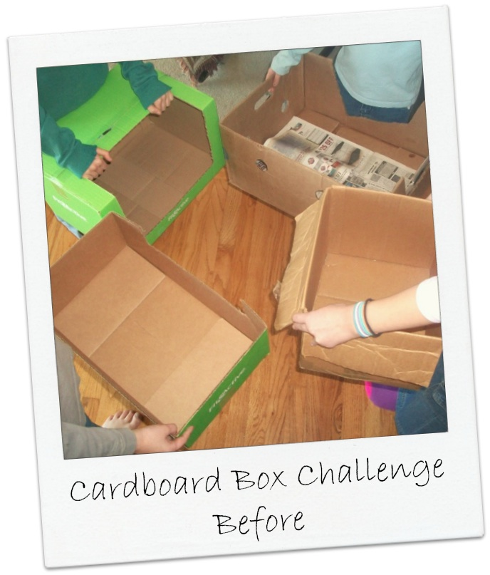 Cardboard Box Challenge Before | Apron Strings & other things