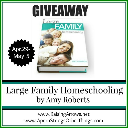 Large Family Homeschooling - Apron Strings Other Things