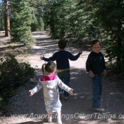 A Camping Scavenger Hunt for Kids