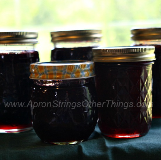 Strawberry Jam - Apron Strings & other things
