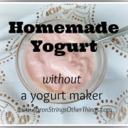 Homemade Yogurt- Apron Strings & other things
