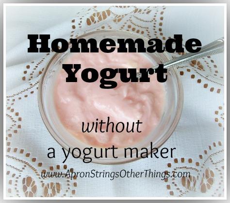 Homemade Yogurt Without a Yogurt Maker