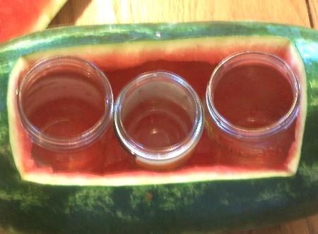 watermelon vase 6