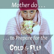 Preparing for Cold Flu Season - Apron Strings & other things