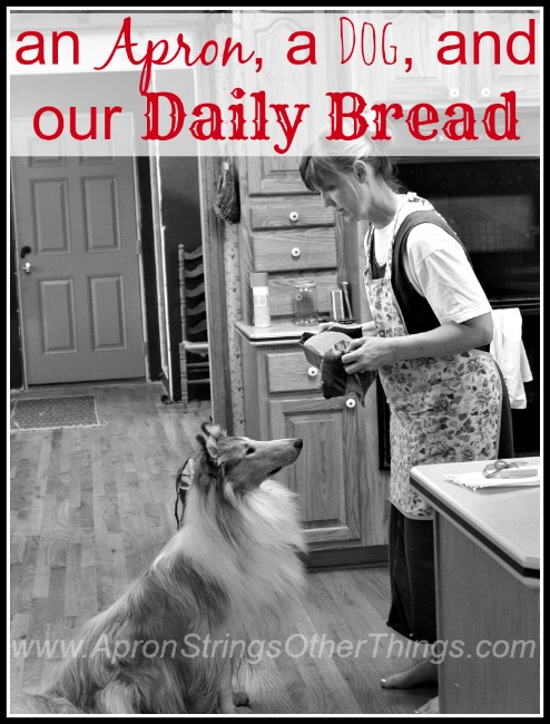 Apron Dog and Daily Bread - Apron Strings & other things