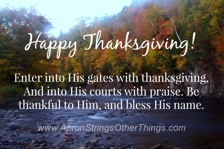Thanksgiving 2014 - Apron Strings & other things