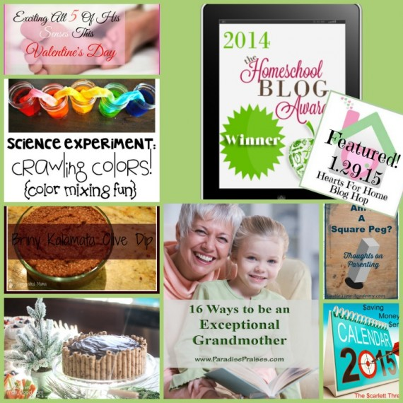 Hearts for Home Blog Hop 1.29.15 - Apron Strings other things