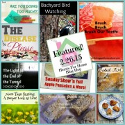 Hearts for Home Blog Hop Featured 2.26.15