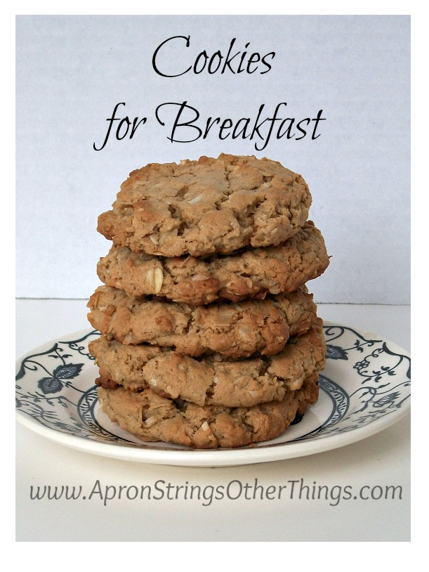 Breakfast Cookies - Apron Strings & other things