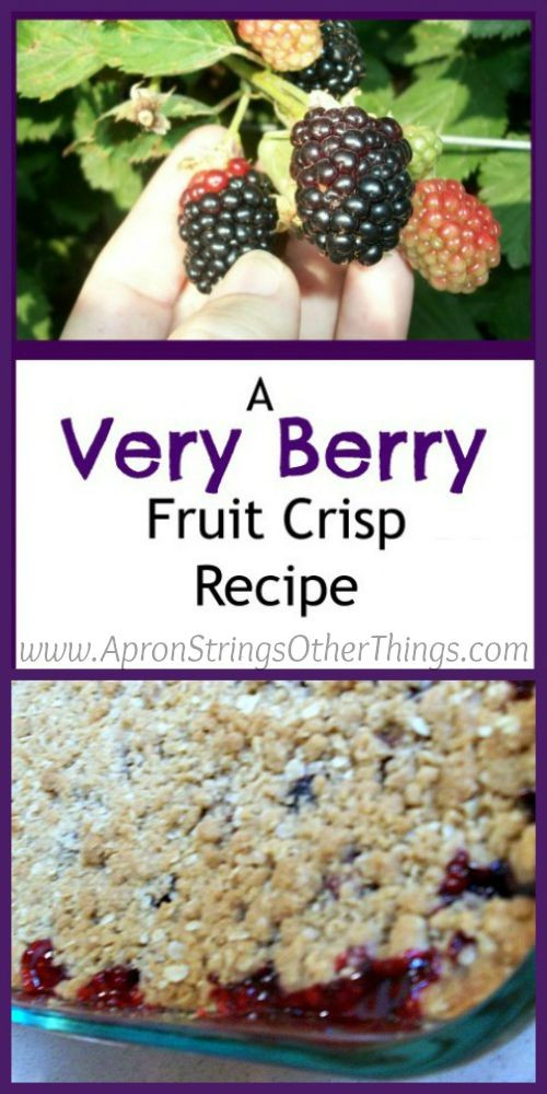 Blackberry Crisp Recipe - Apron Strings Other Things