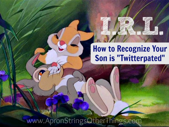 I.R.L. How to Recognize Your Son is Twitterpated at ApronStringsOtherThings.com
