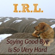 I.R.L.  Saying Good-Bye is So Very Hard