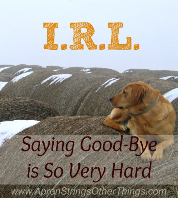 I.R.L. Saying Goodbye is So Very Hard at ApronStringsOtherThings.com