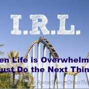 I.R.L. When Life is Overwhelming, Just Do The Next Thing