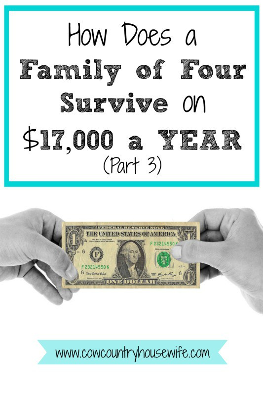 hfh 3.3.16 How-Does-a-Family-of-Four-Survive-on-17000-a-YEAR-Part-3-Cow-Country-Housewife