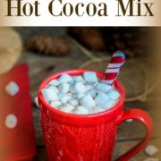 DIY Hot Cocoa Recipe and Hot Chocolate Bar