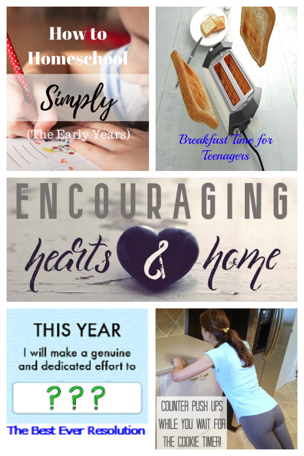 encouraging-hearts-and-home-blog-hop-1-5-17featured-at-apronstringsotherthings-com