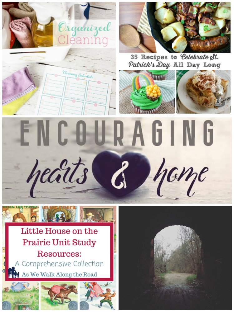 Encouraging Hearts & Home Blog Hop Featured posts 3.9.17 at ApronStringsOtherThings.com