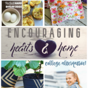 Encouraging Hearts and Home Blog Hop 3.2.17