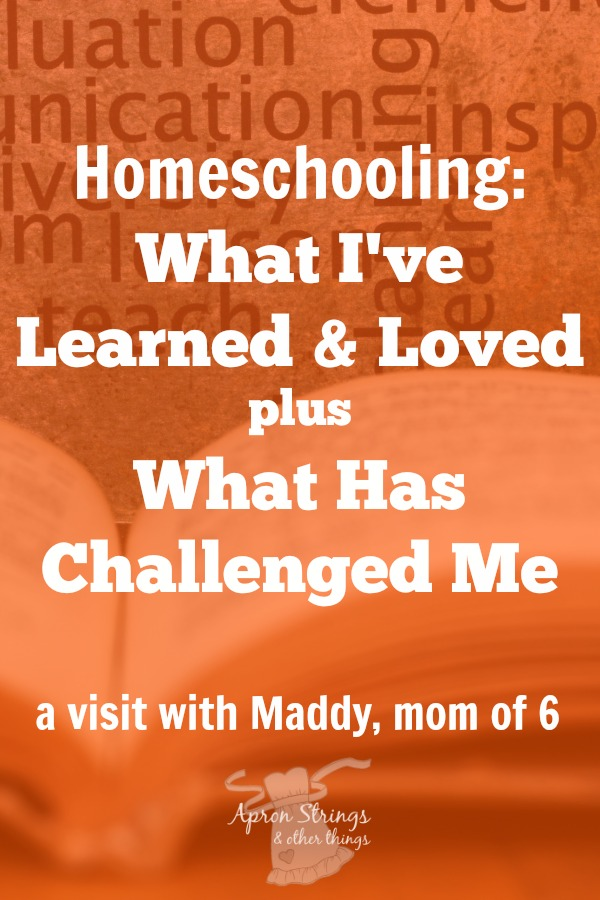 Homeschool Mom Shares What She Loves What She Learned What Challenges at ApronStringsOtherThings.com