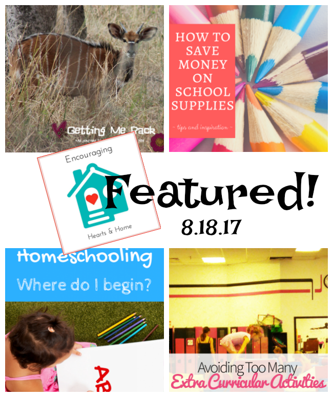 School Days and Encouraging Hearts & Home Blog Hop at ApronStringsOtherThings.com