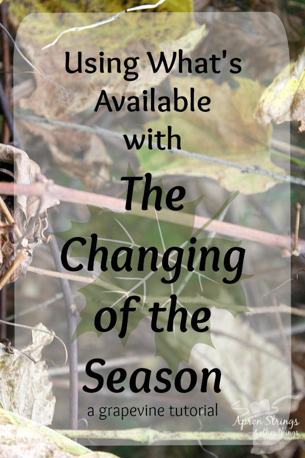 Grapevine Tutorial Using What's Available with the Changing of the Season at ApronSTringsOtherThings.com