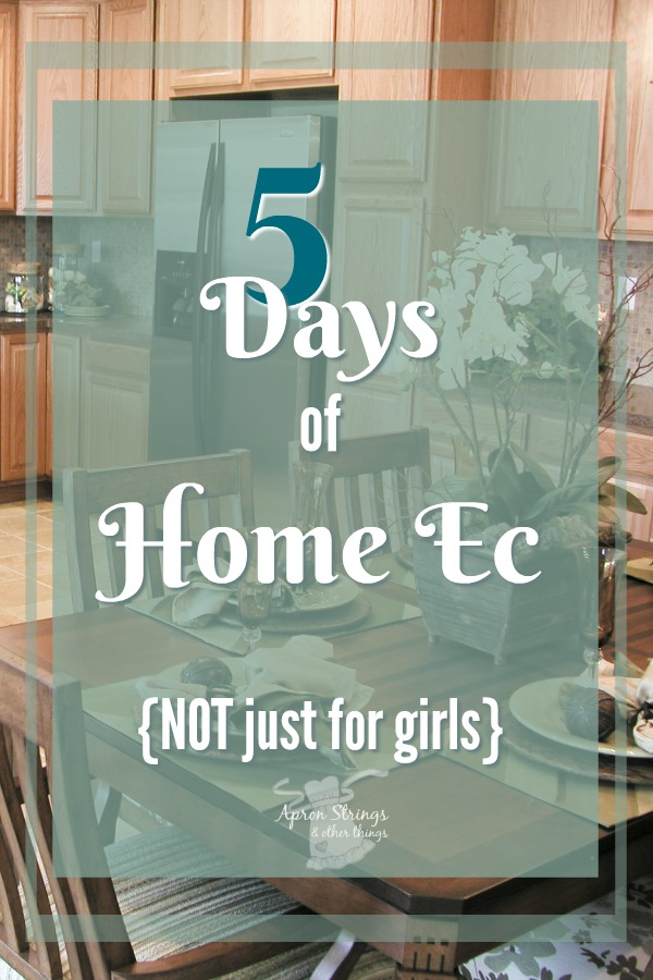Five Days of Home Economics NOT just for girls at ApronStringsOtherThings.com