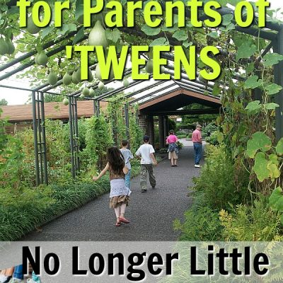 No Longer Little – A Book Review for Parents of Tweens