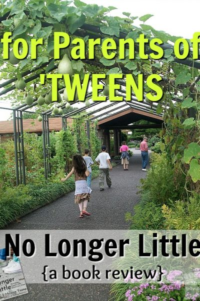 For Parents of Tweens No Longer Little Book Review Great Waters Press at ApronStringsOtherThings.com