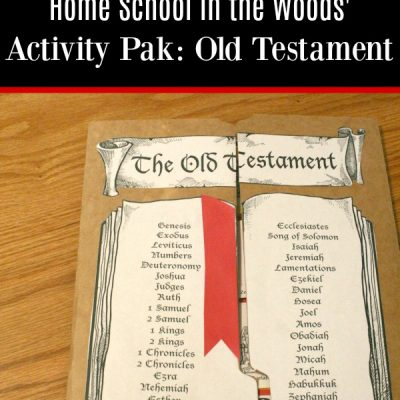 Home School in the Woods Old Testament Activity Pak {a review}