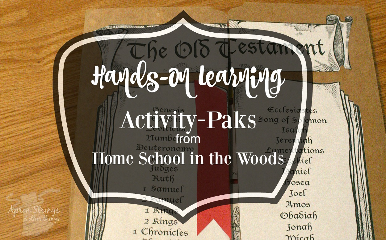 Home School in the Woods Old Testament Activity Pak at ApronSTringsOtherThings.com
