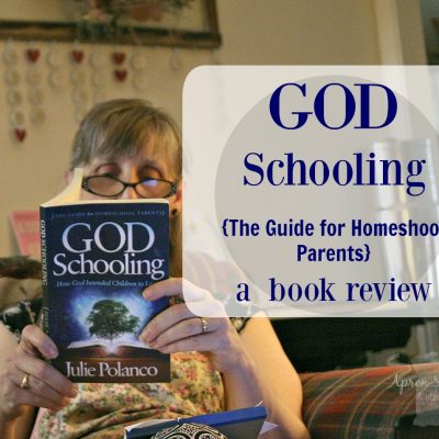 God Schooling {The Guide for Homeshool Parents} a  book review