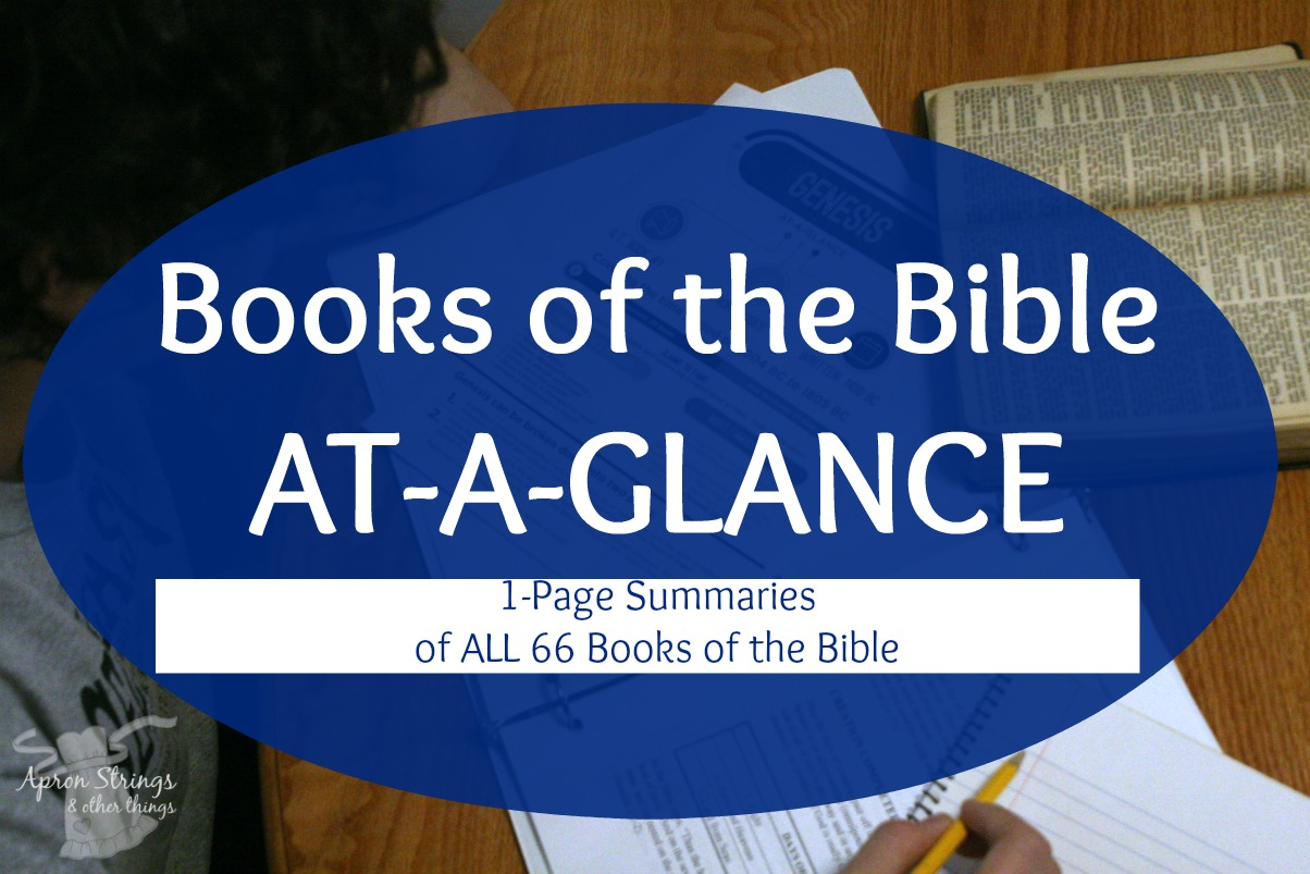 At A Glance Books Bible from Sunday School Teachers at ApronStringsOtherThings.com