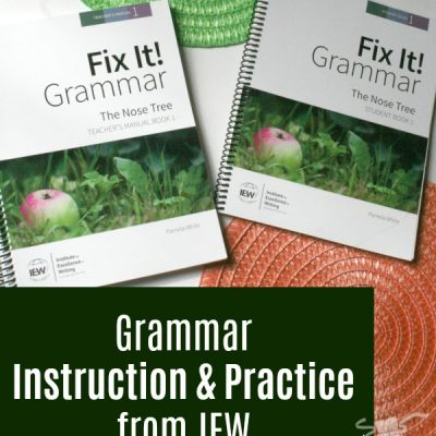 Fix It! Grammar {a review of Book One}