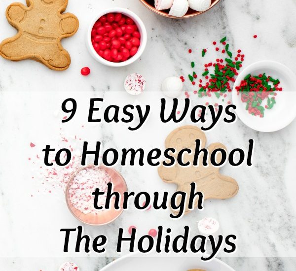 9 Easy Ways to Homeschool Trhough The Holidays at ApronStringsOtherThings.com pin