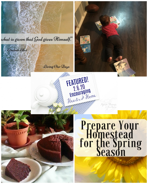 Encouraging Hearts & Home Blog Hop Featured 2.6.20 at ApronStringsOtherThings.com