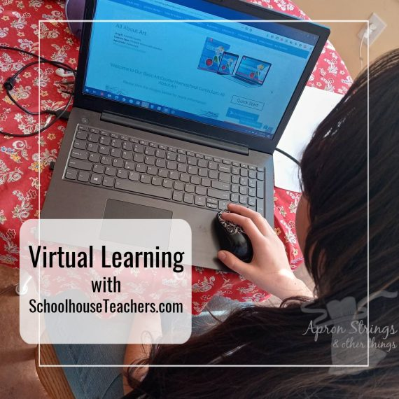 Virtual Learning with SchoolhouseTeachers.com at apronstringsotherthings.com