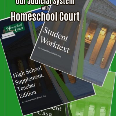 Homeschool Court – a review