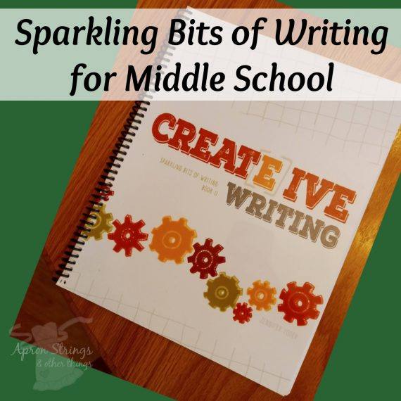 sparkling bits of writing creative writing book 2 at apronstringsotherthings.com