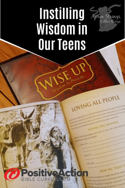 Positive Action for Christ Wise Up Review at apronstringsotherthings.com