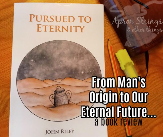 book review pursued to eternity john riley at apronstringsotherthings.com