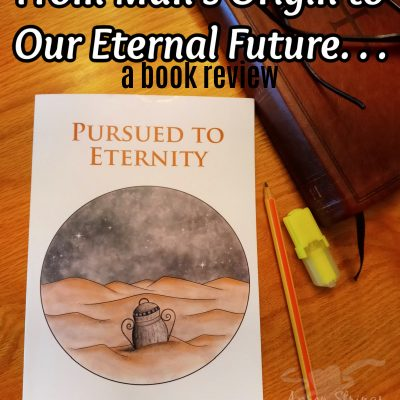 Pursued to Eternity review