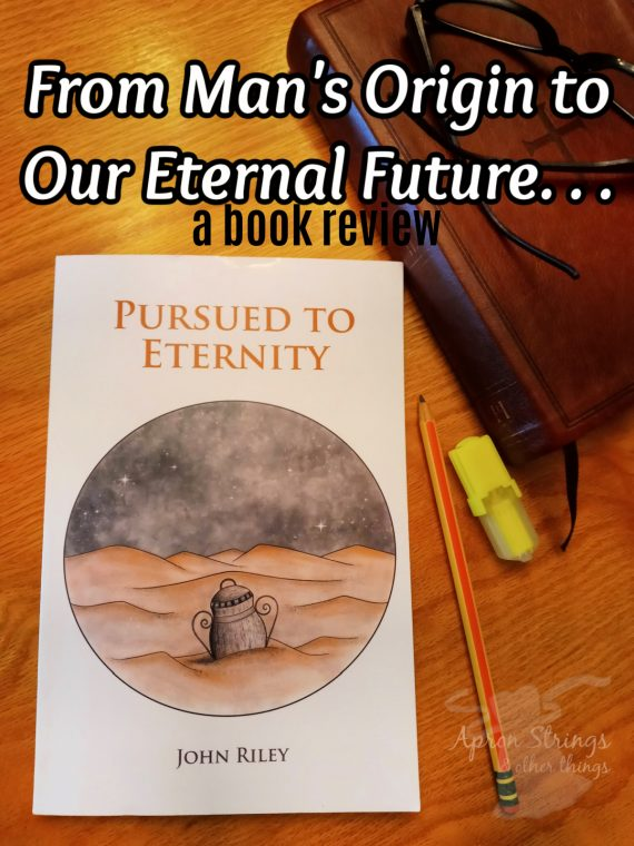 pursued to eternity john riley book review at apronstringsotherthings.com