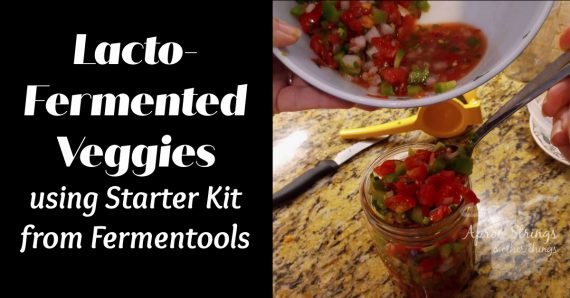 fermenting veggies with fermentools starter kit at apronstringsotherthings.com