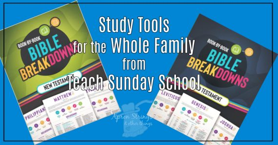 book by book bible breakdowns teach sunday school at apronstringsotherthings.com